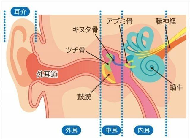 医師が説明する】交通事故による耳の症状と治療について